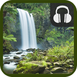 Nature Sounds Plus
